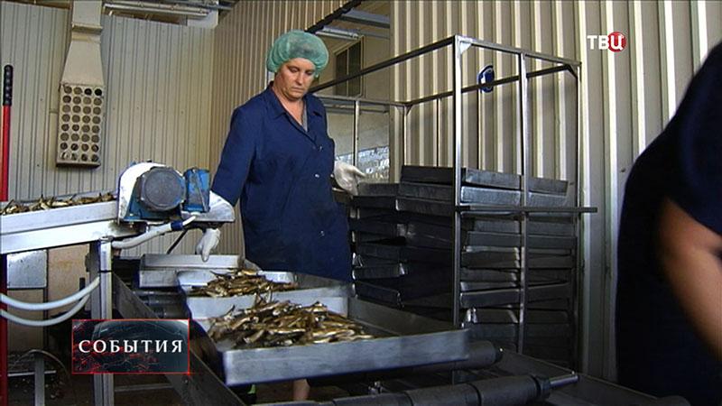 Фабрика рыбных консервов