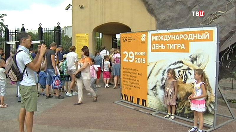 День тигра в Московском зоопарке