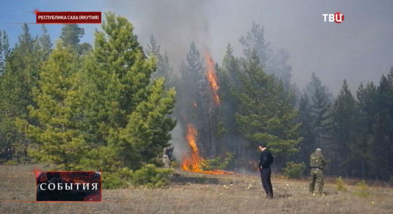 Лесные пожары в Республике Саха