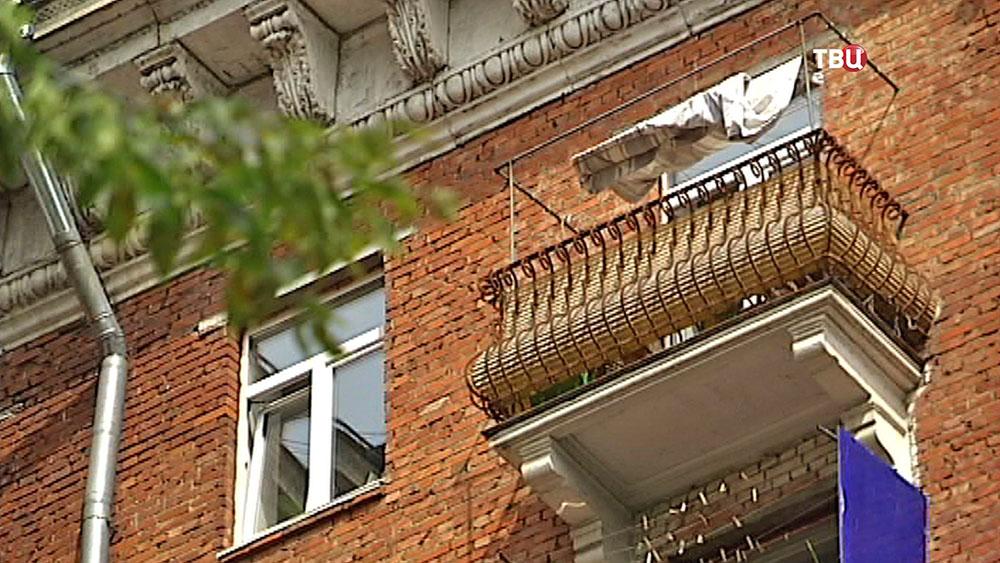 В москве собаку породы акита-ину заперли на балконе :: новос.