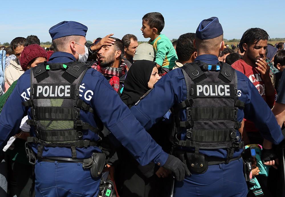 17 мигранты