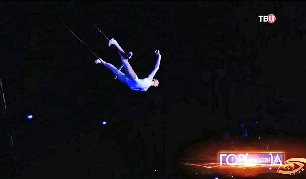 Воздушная гимнастка в цирке