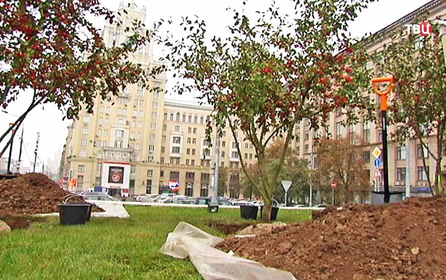 Озеленение Триумфальной площади