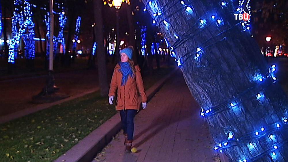 Осенне-зимняя иллюминация