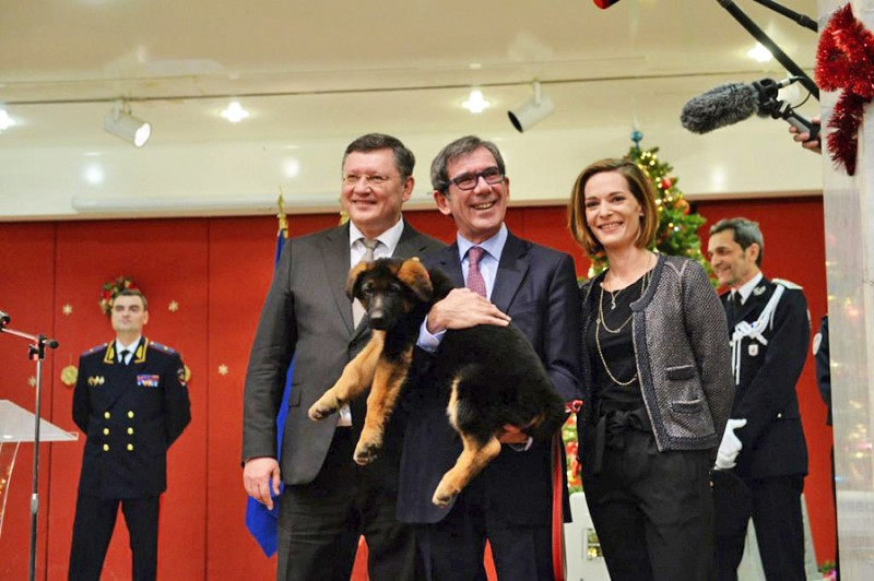 Посол Франции в России Жан-Морис Рипер во время церемонии передачи в дар французской полиции щенка Добрыни в посольстве Франции в Москве