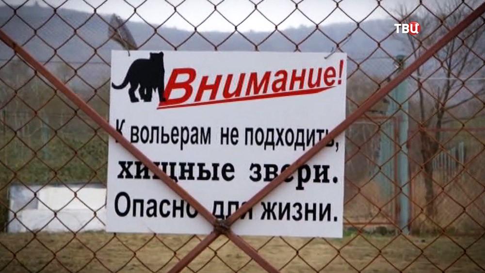 Объявление на вольере с тиграми