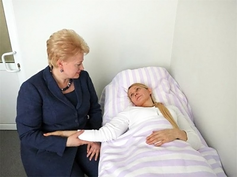 Президент Литвы Даля Грибаускайте и Юлия Тимошенко