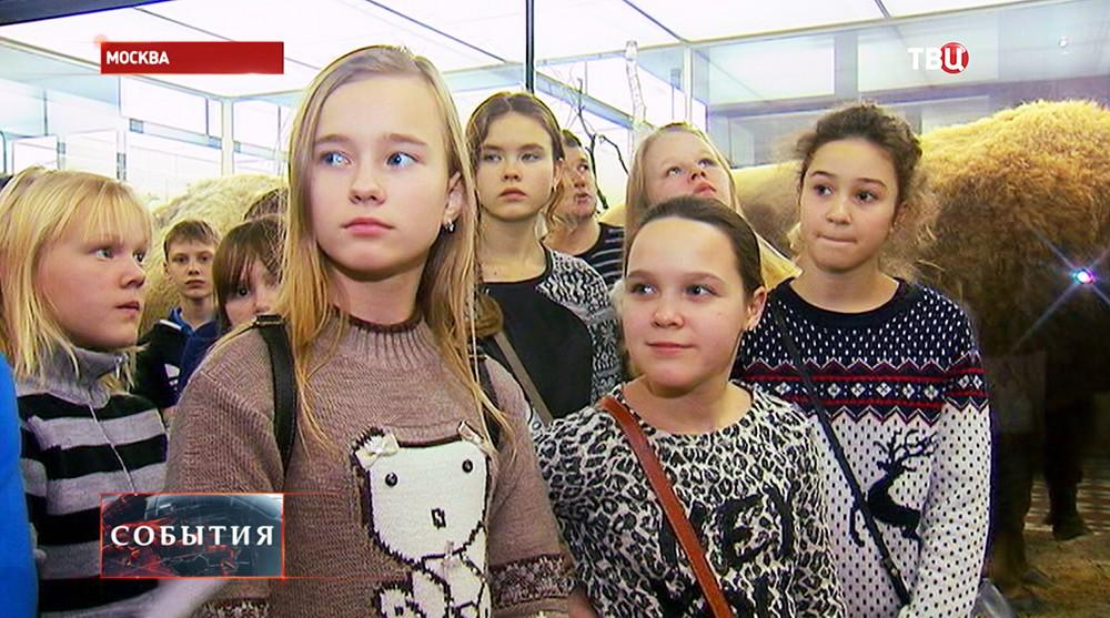 Дети во время посещения зоологического музея в Москве