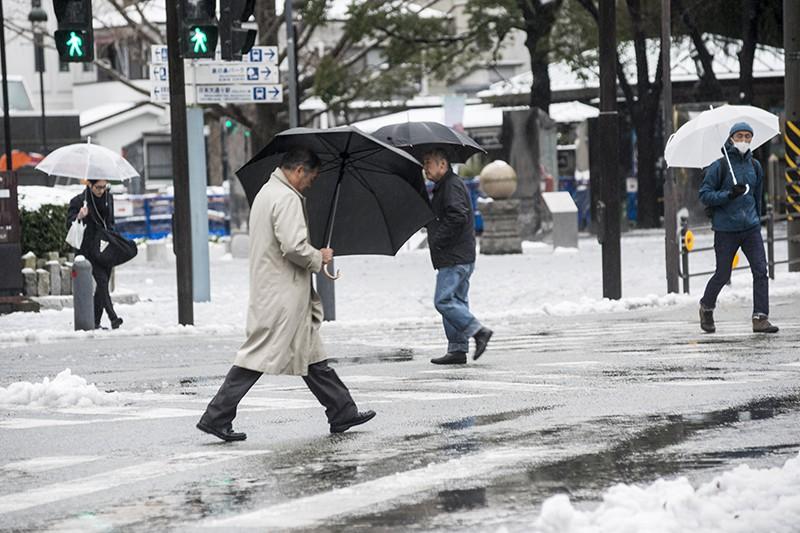В Японии во время снегопада погибли 8 человек