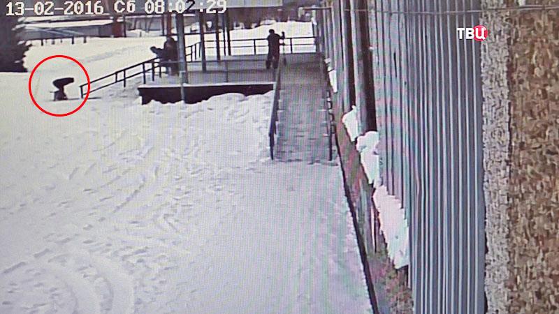 Съемка камеры видеонаблюдения