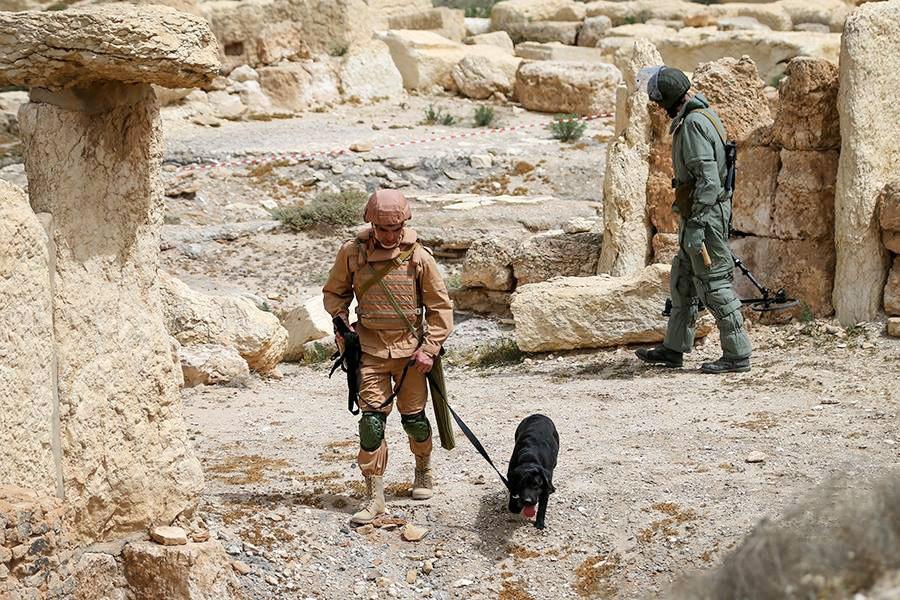 Саперный отряд во время разминирования в Сирии