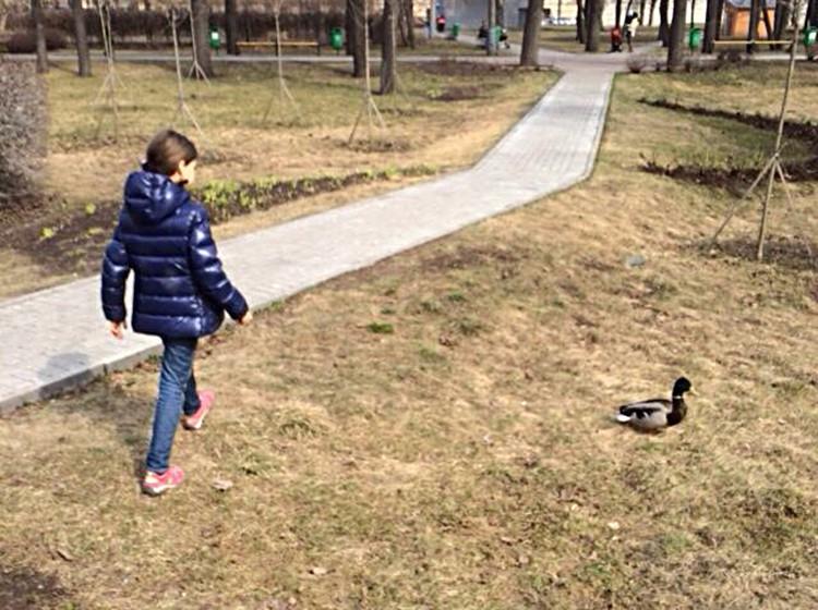 Отдыхающие в парке