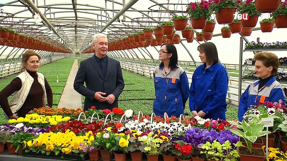 Сергей Собянин посетил цветочные теплицы