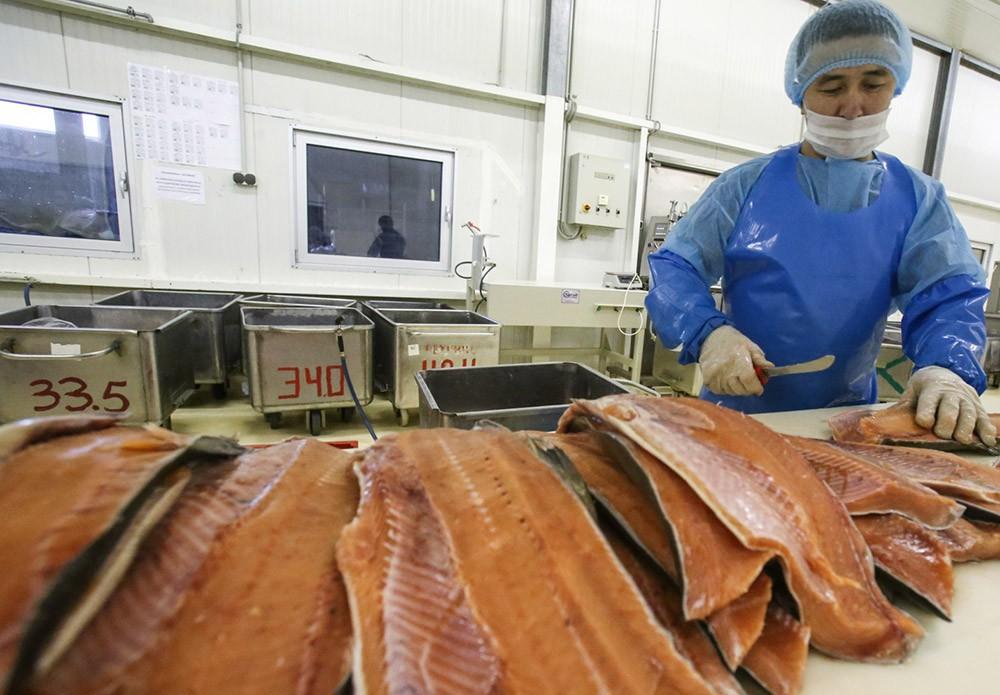 Производство по переработке рыбы
