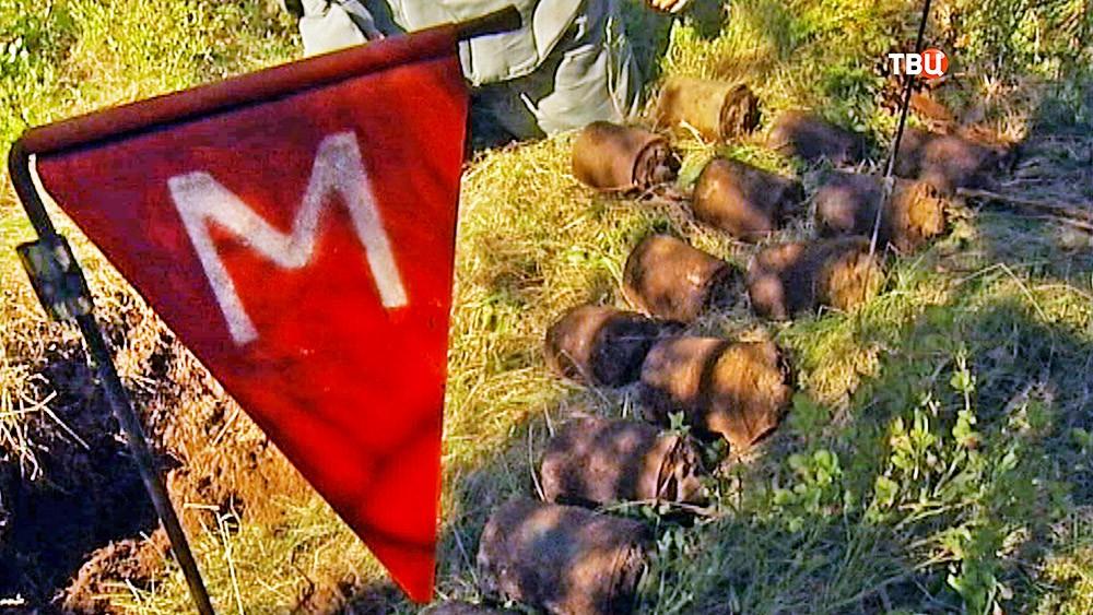 Саперы разминируют боеприпасы времен ВОВ