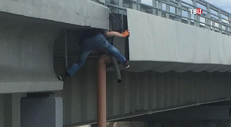 Мужчина спасает кота