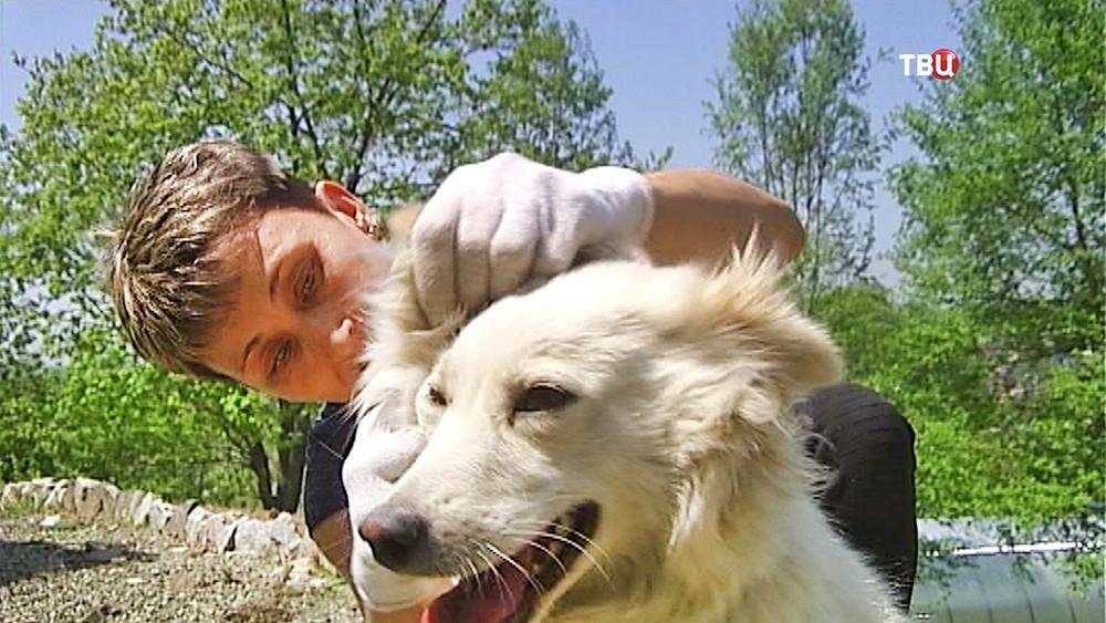 Хозяйка осматривает собаку на предмет укусов клещей
