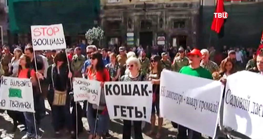 Митинг у здания горсовета во Львове