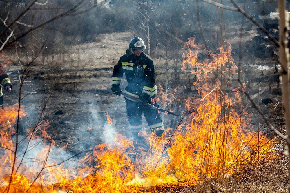 Пожары Скачать Торрент - фото 7