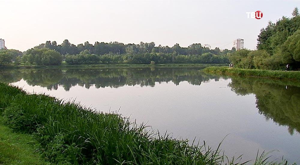 Большой солнцевский пруд