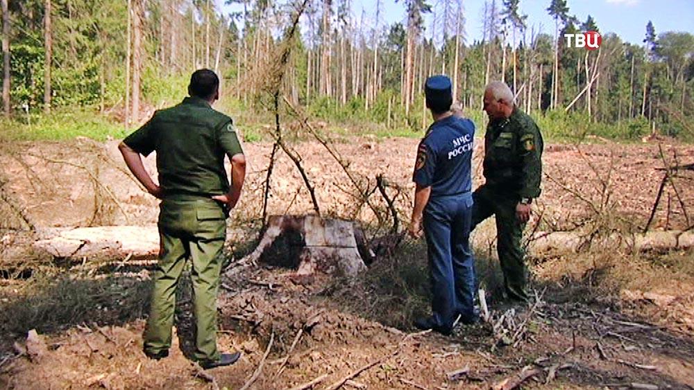 Спасатели МЧС проверяют леса
