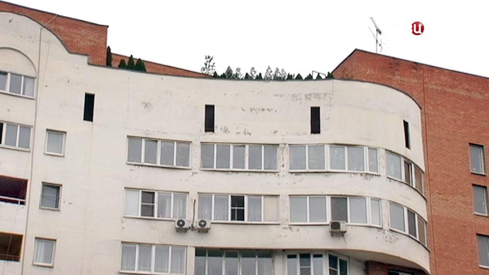 Курорт на крыше дома