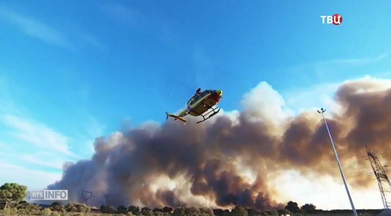 Наюге Франции впроцессе тушения природных пожаров ранены четверо пожарных
