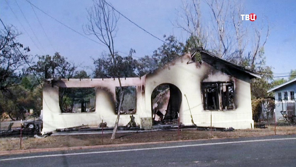 Последствия лесных пожаров в США