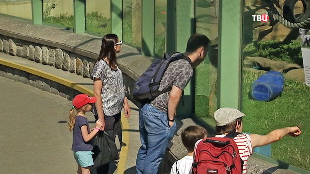 Посетители зоопарка
