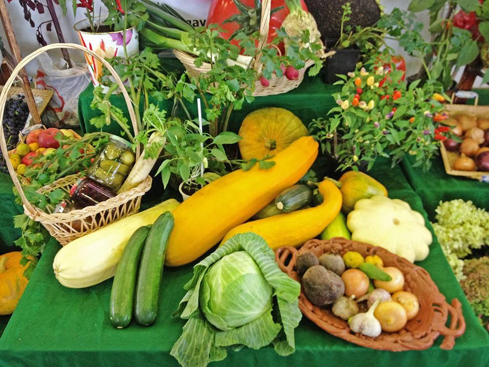 Аграрная выставка