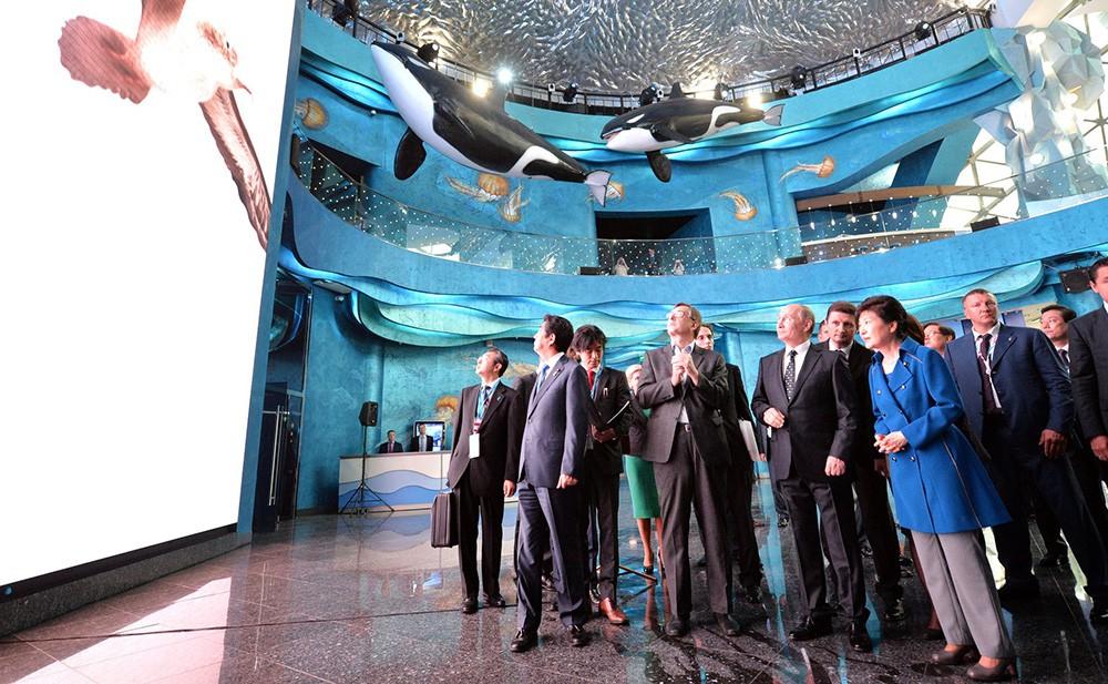 Президент России Владимир Путин, премьер-министр Японии Синдзо Абэ и президент Республики Корея Пак Кын Хе в Приморском океанариуме