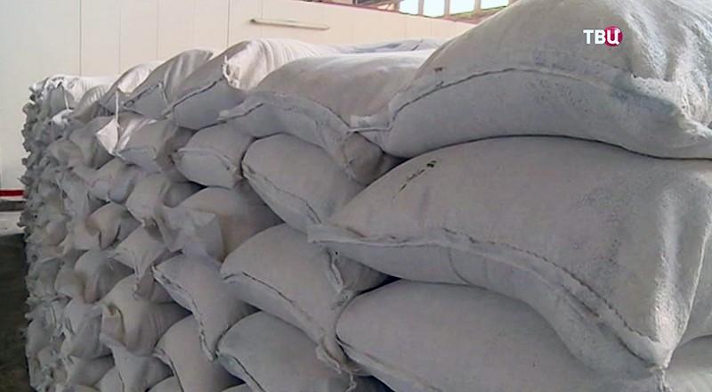 Пять тонн муки для жителей Алеппо