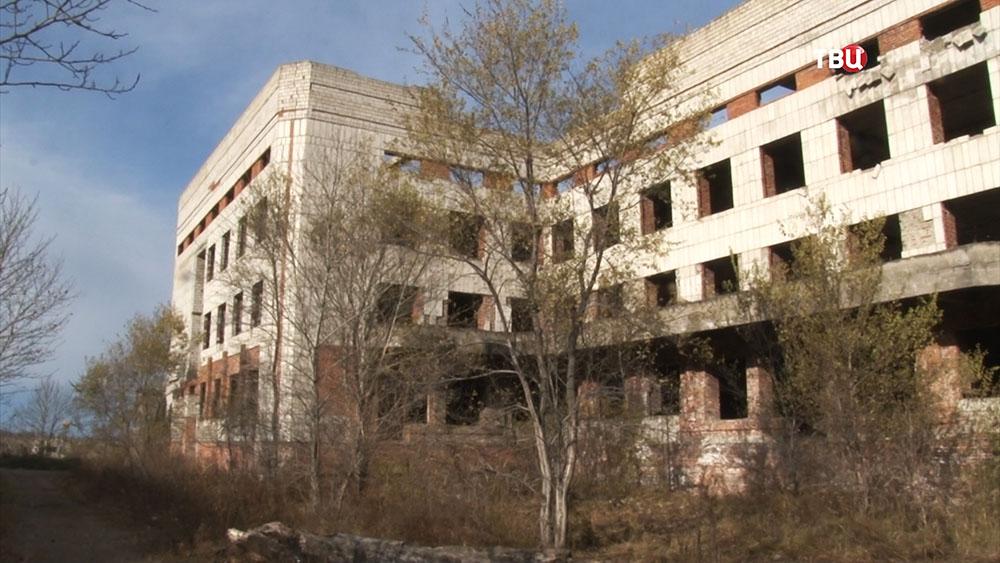 Здание в Хабаровске, где убивали животных