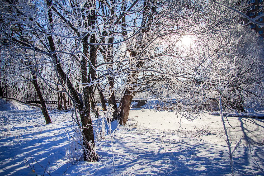 фото зима в москве