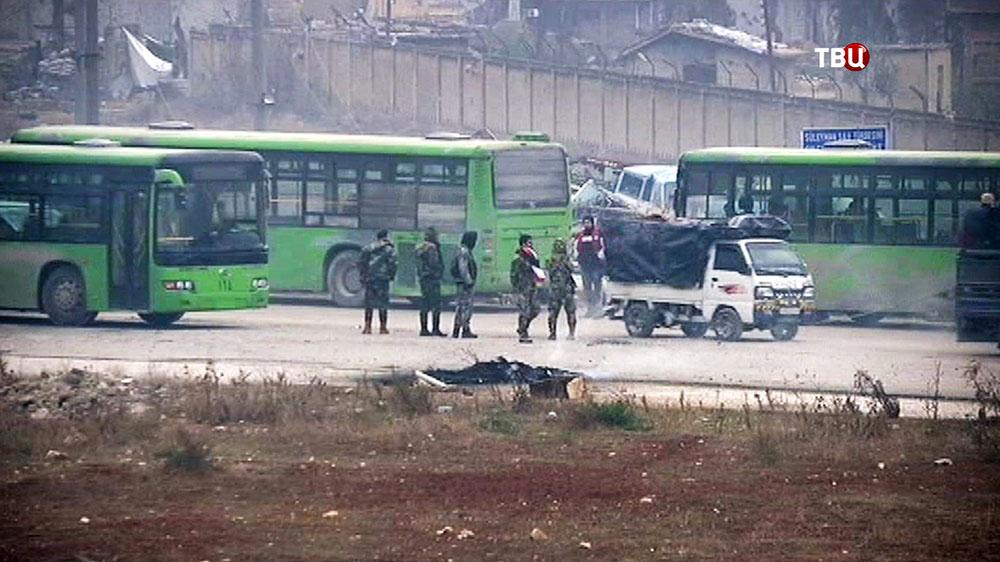 Автобусы в ожидании выхода боевиков из районов Алеппо