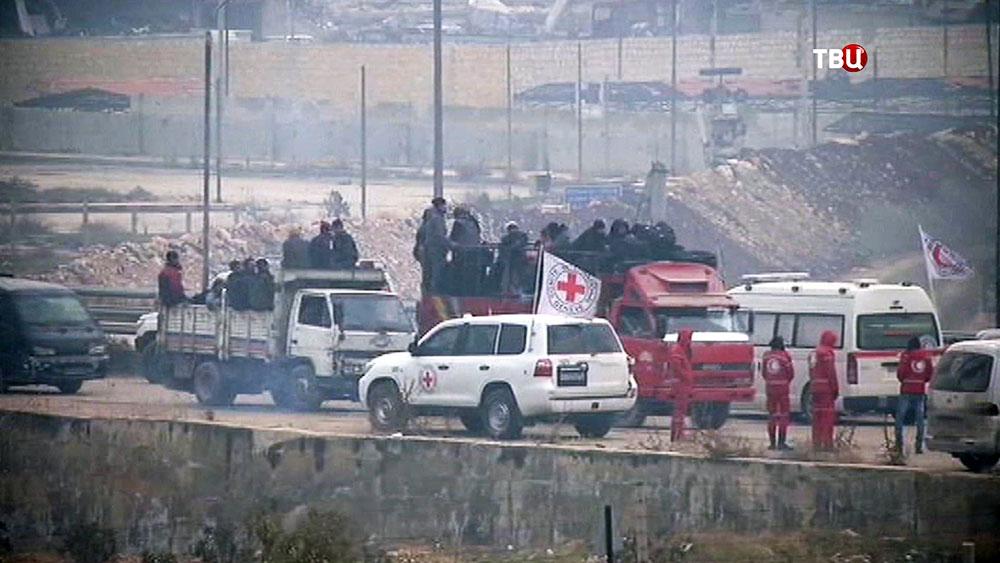 Представители Красного Креста в Сирии