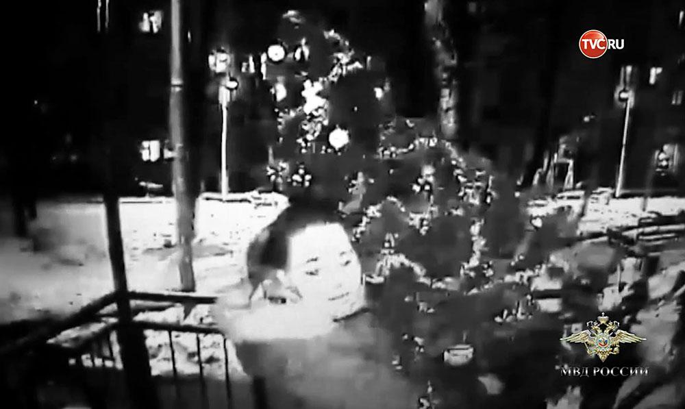 Кража новогодней ёлки