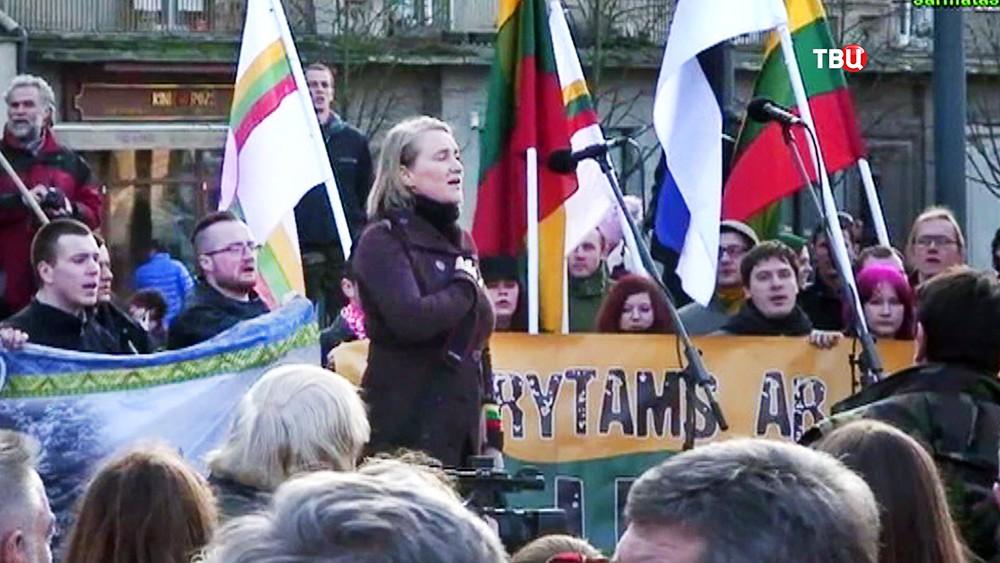 Митинг литовских радикалов