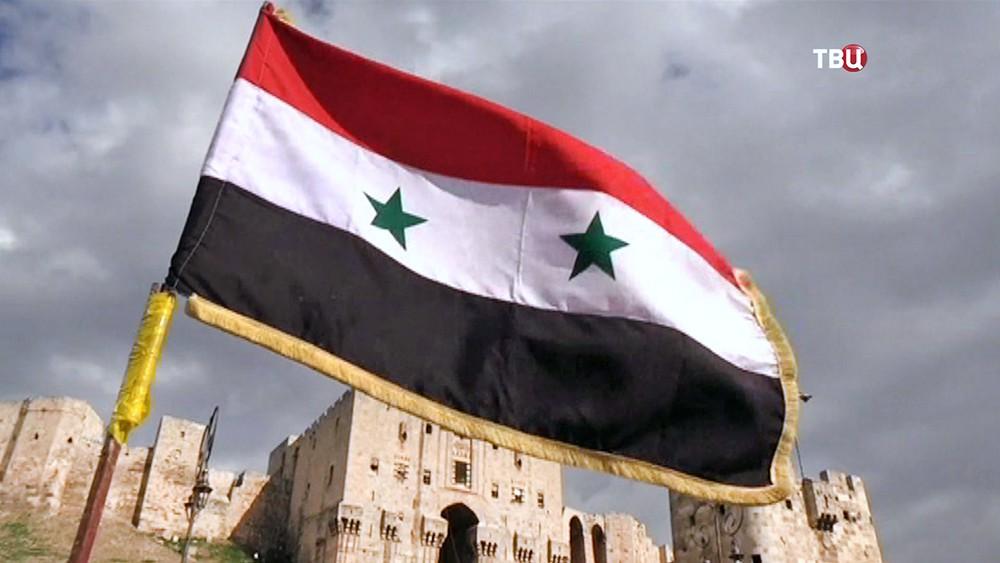 Флаг Сирии на фоне Цитадели в Алеппо