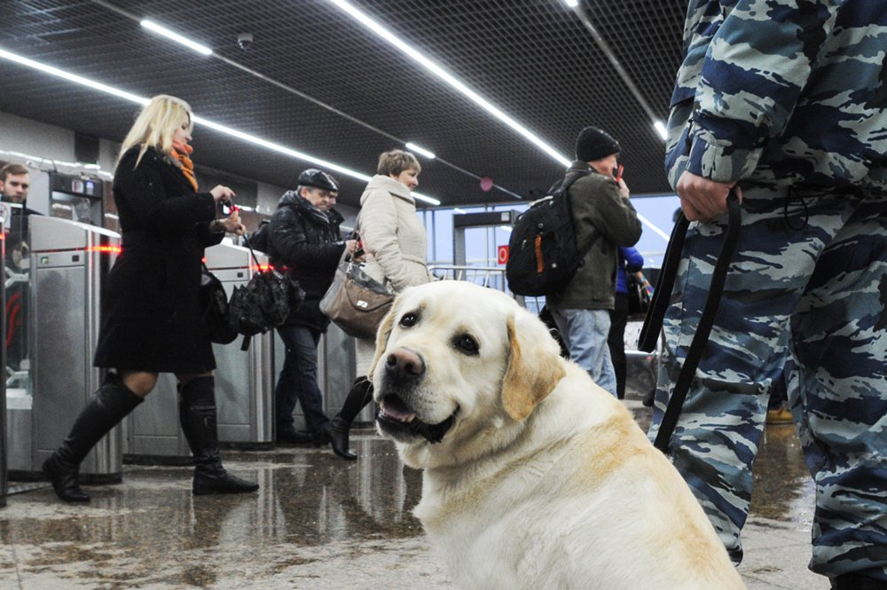 Сотрудник полиции на станции московского метро