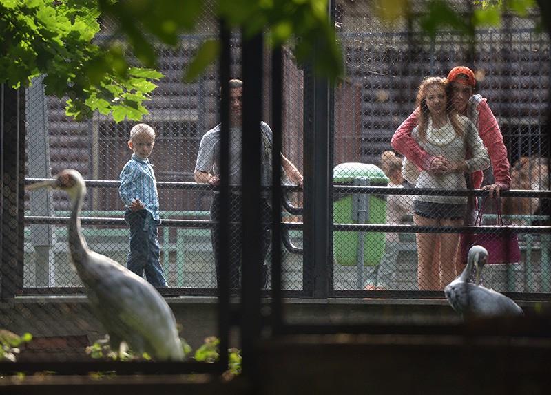 Поскидкам вМосковский зоопарк впервую очередь ходят Воробьёвы