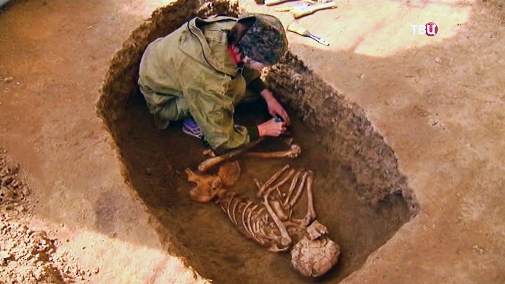 В китае нашли останки древних великанов :: новости :: тв центр - официальный сайт телекомпании.