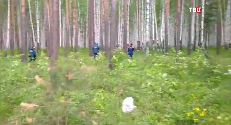 Захотел ее в лесу