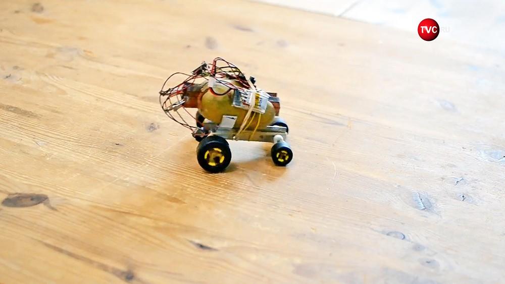 Польский инженер создал беспилотник изкартошки
