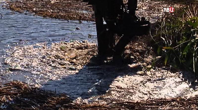 Чистка реки