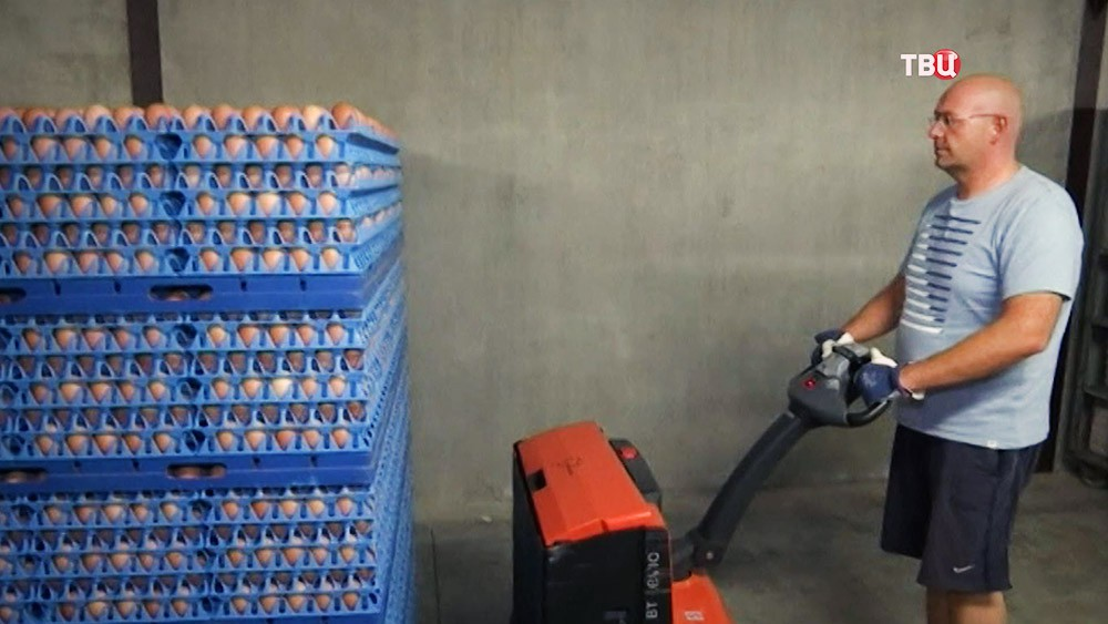 Партия яиц