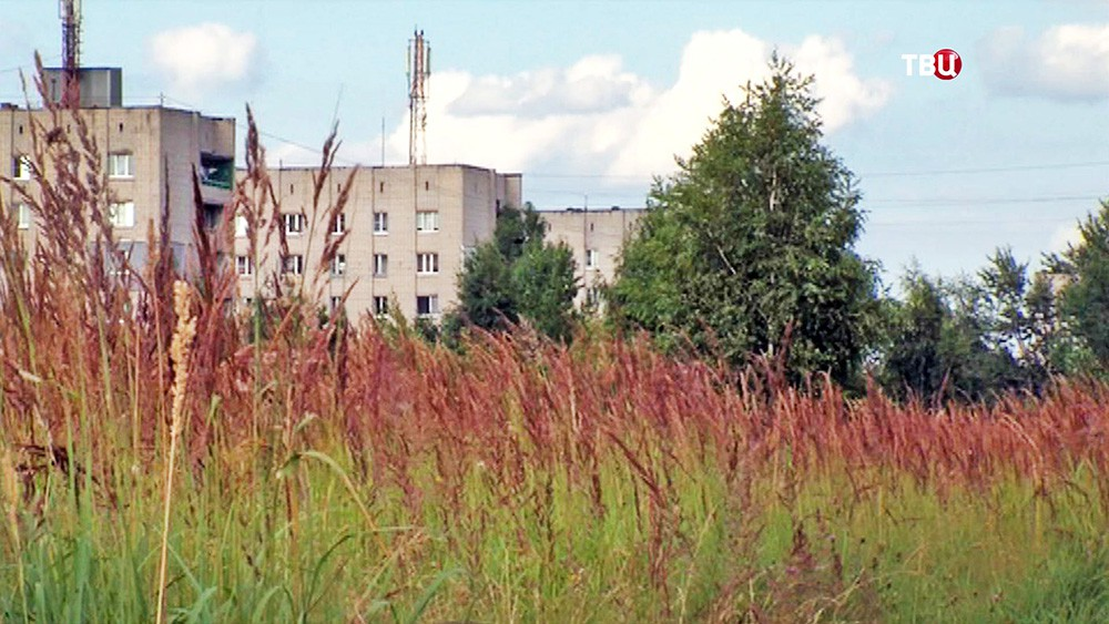 В Ярославле подростки избили свою одноклассницу