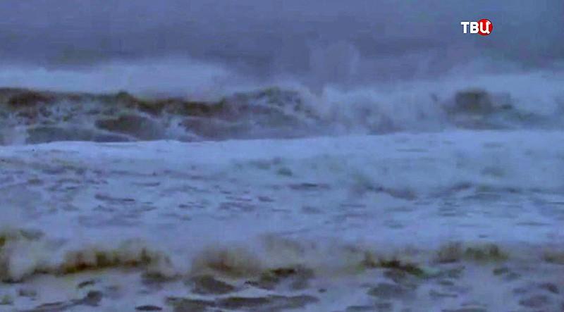 "Тайфун ""Талим"""