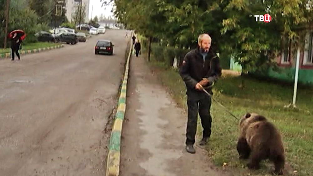 Мужчина выгуливает медвежонка в городе