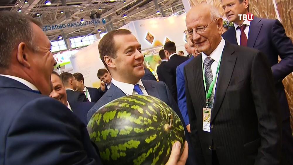 """Дмитрий Медведев на агропромышленной выставке """"Золотая осень"""""""
